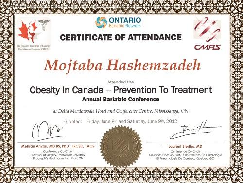 دکتر مجتبی هاشم زاده - جراح چاقی (1)